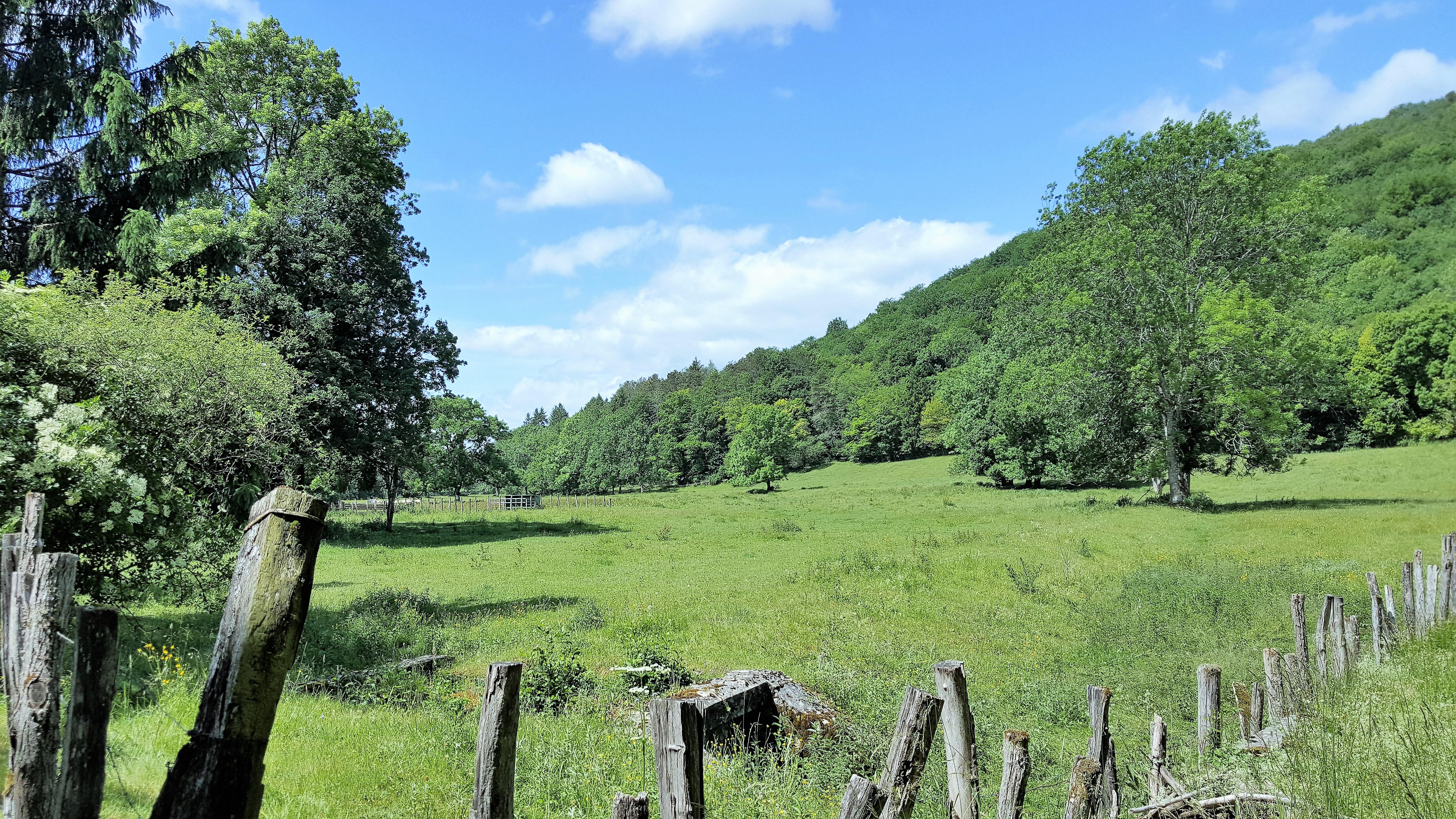 Plateau-de-Langres-paysagesreconquis